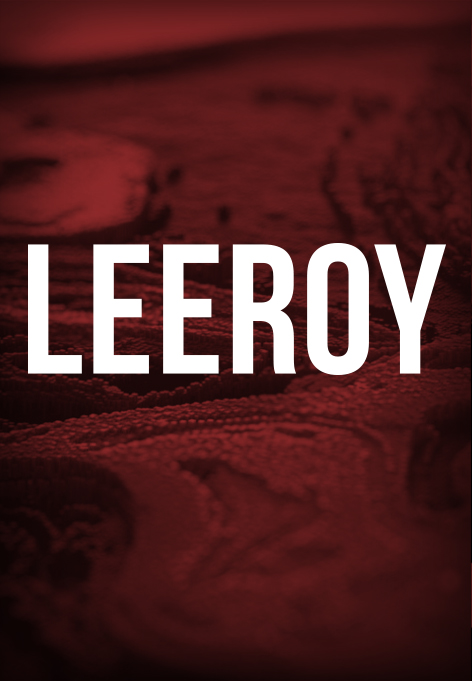 Abstract motife. Above is a text saying Leeroy.